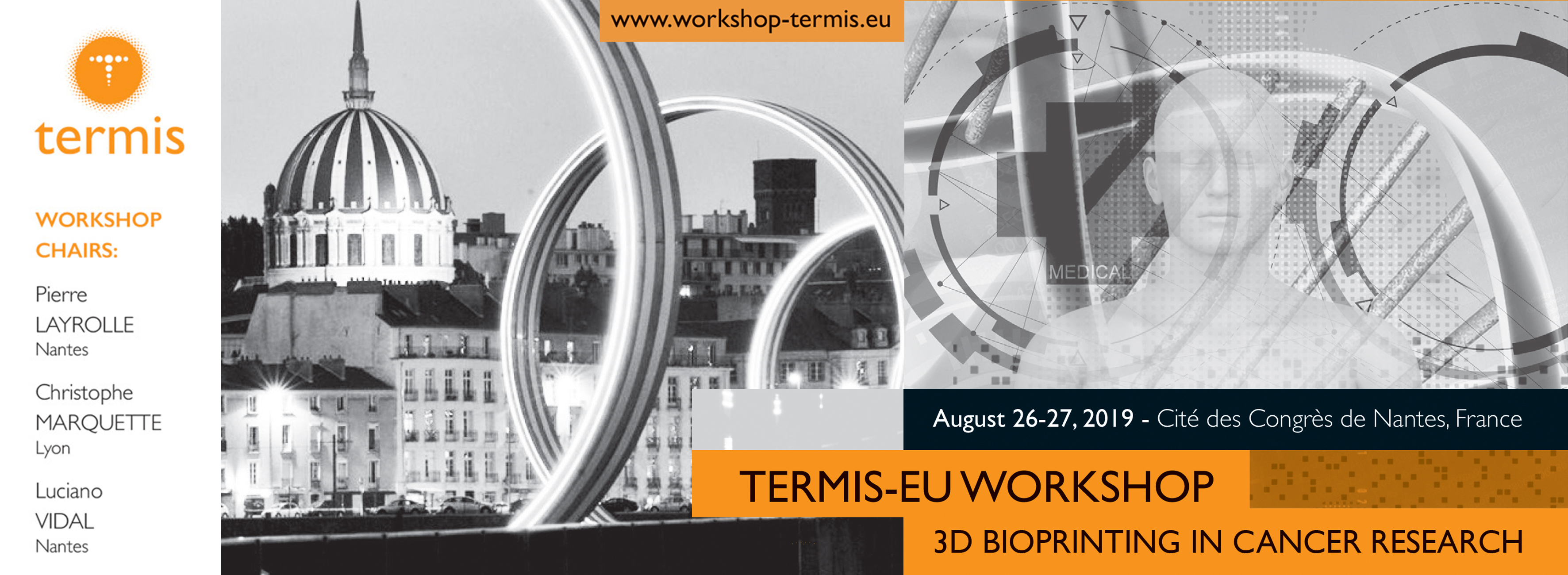 TERMIS - EU Workshop